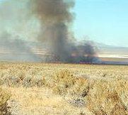 Smoke on the horizon of sagebrush grassland fire.