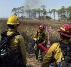Firefighters at prescribed fire