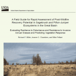 Rapid Assessment field guide cover