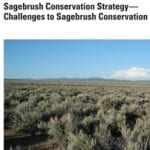 Sagebrush Cons Strategy report cover